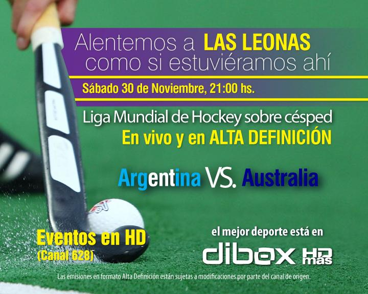 Placas hockey 30-11